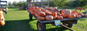 Fall Ideal Time to Check out Ephraim, WI Lodging