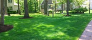 lawn care in Green Bay by Straw Hat Lawn Care