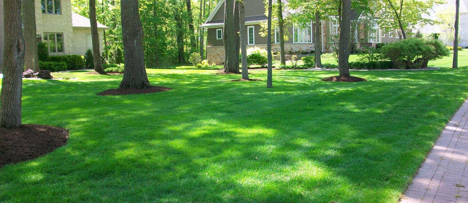 Straw Hat Lawn & Landscape Details Services on Updated Website