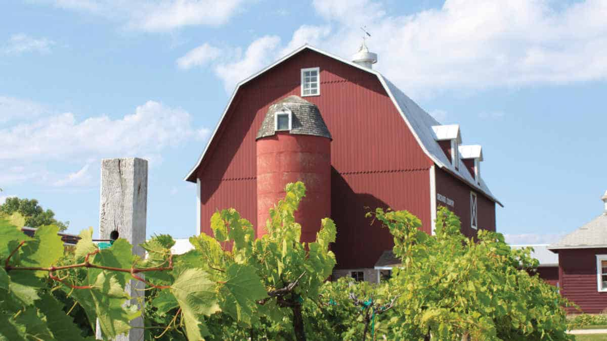 Door County Winery Tours and Events Celebrate Fall