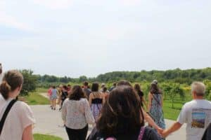 Experience winery tours in Door County this fall