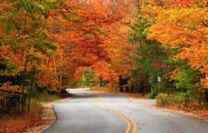 You haven't missed Door County peak fall colors