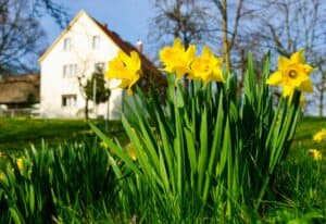 Spring is transition time for Green Bay heating and cooling